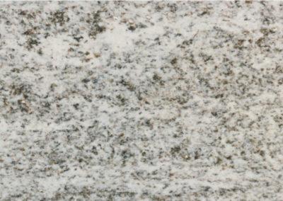 beola-grigia