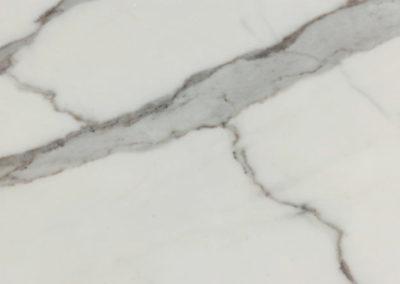 bianco-statuario-venato